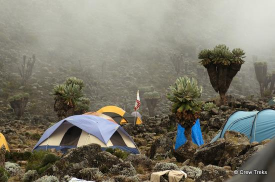 Mt. Kilimanjaro, Barranco Camp On Machame Route